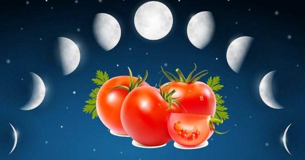 посадочный лунный календарь на март 2019 года