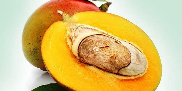 косточка из спелого плода манго