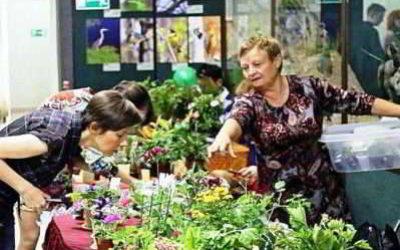 Выставка цветов «Осенние краски» открылась в Иркутске