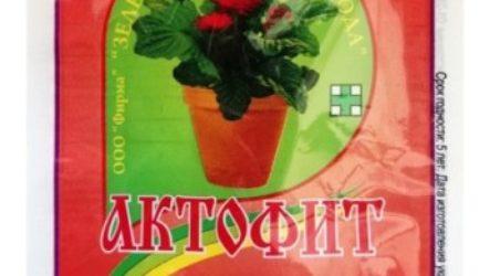 Инсектициды для защиты комнатных растений от вредителей