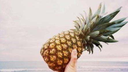 Выращиваем ананас из верхушки