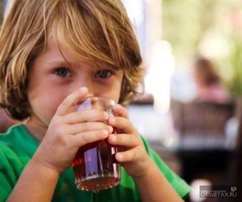 калина красная полезные свойства и противопоказания для детей