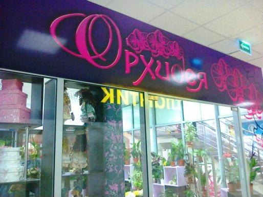магазин орхидея купить