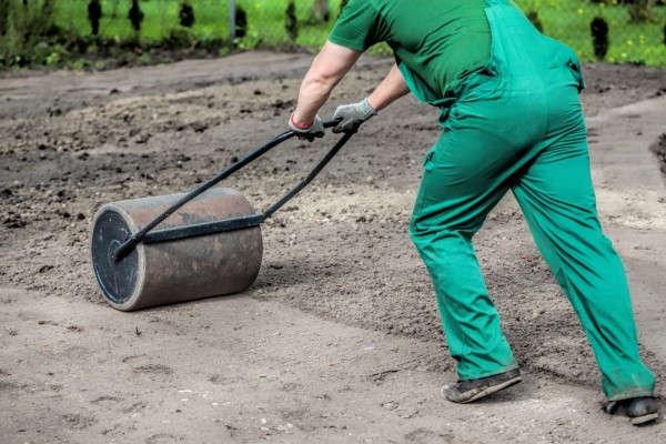 как сажать газонную траву осенью