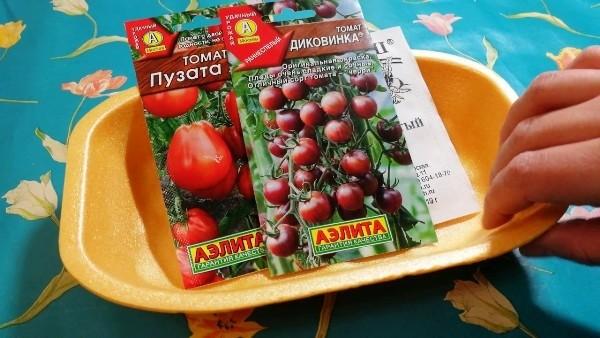 когда сеять томаты на рассаду в 2018 году по лунному календарю