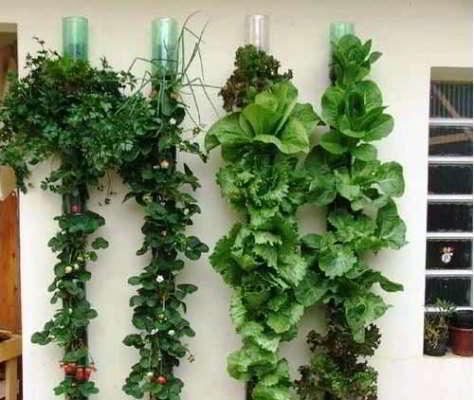 из бутылок пластиковых для сада поделки