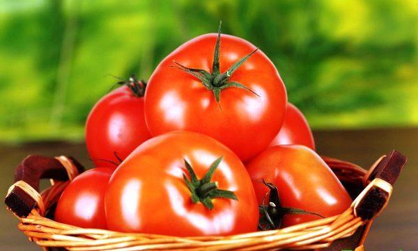 выращивание рассады помидор в 2018 году