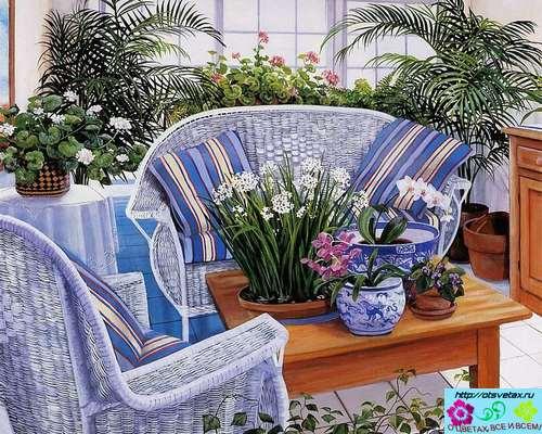 цветы в интерьере квартиры фото