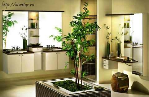 цветы в дизайне гостиной