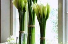 Как разместить цветы в дизайне для разных стилей интерьера