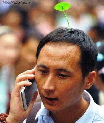 растения на голове китайца