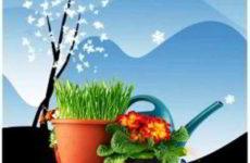 Лунный календарь для садовода, огородника, цветовода на февраль 2019 года
