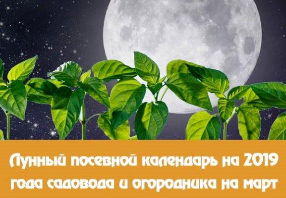 лунный календарь март 2019 года фазы луны
