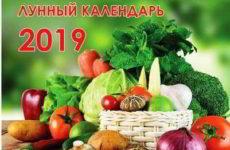 Лунный календарь на март 2019 года для посева, посадок, таблица работ