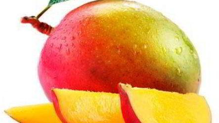 Манго из косточки: как вырастить в домашних условиях и получить плоды