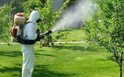 Какой садовый опрыскиватель лучше выбрать и купить в 2019 году
