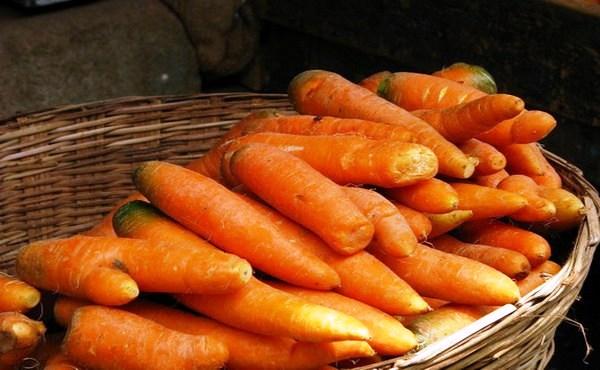 как сохранить морковь зимой в домашних условиях