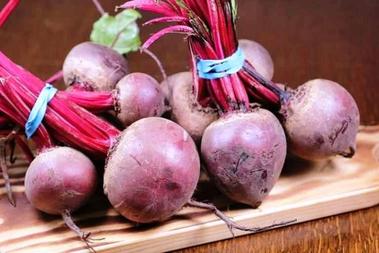 свекла корнеплод как правильно хранить зимой