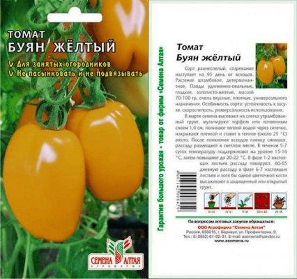 pomidor-sort-boec-dlja-sibiri