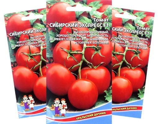 tomat-sibirskij-ekspress-dlja sibiri