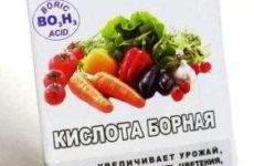 Опрыскиваем помидоры и огурцы борной кислотой для повышения урожайности