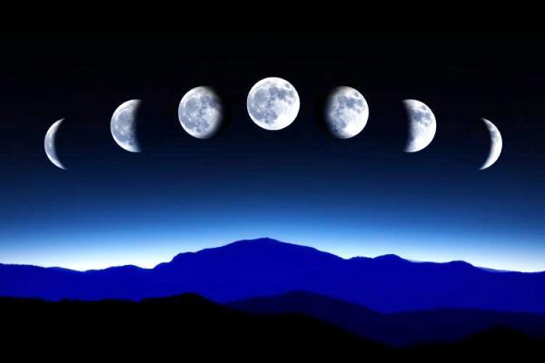 лунный календарь посадки рассады на 2018 год