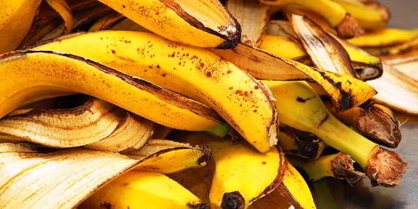 кожура бананов удобрение