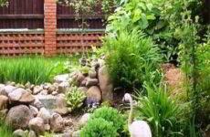Основные принципы устройства сада