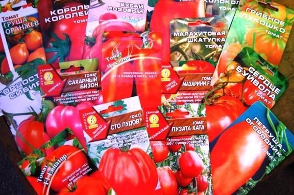 семена помидор в упаковках