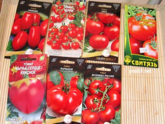 сроки посадки помидоров на рассаду в 2018 году